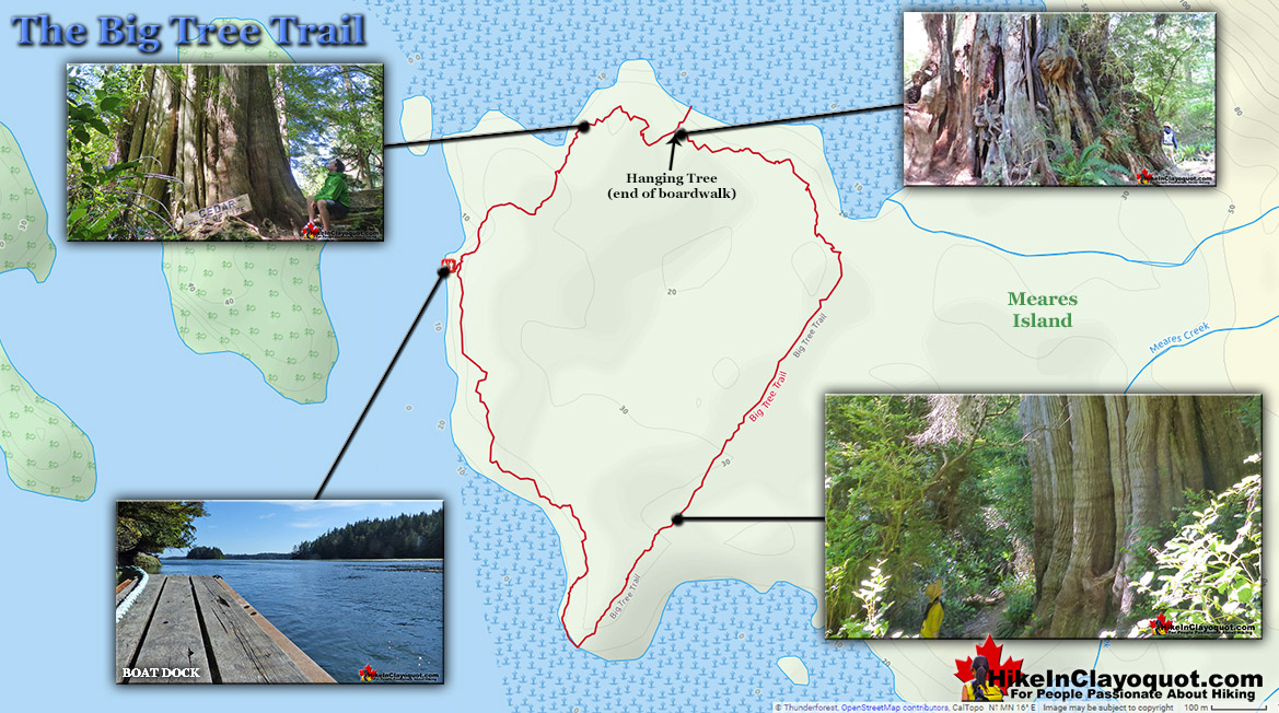 The Big Tree Trail Map