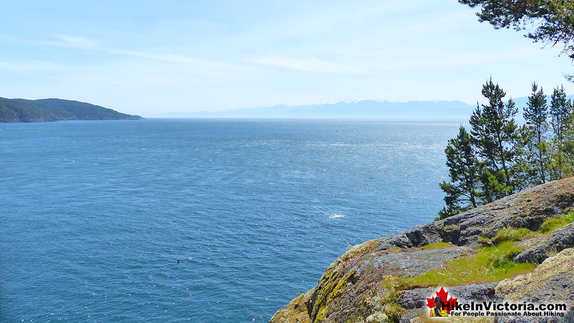 East Sooke Park Hike in Victoria