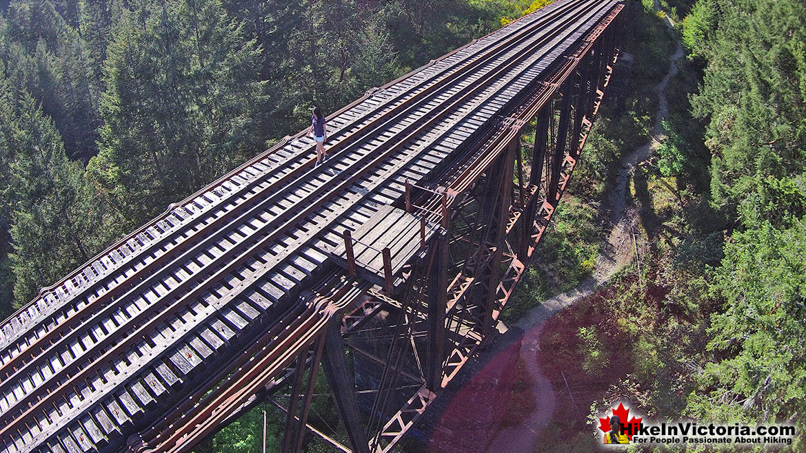 Goldstream Park Train Trestle
